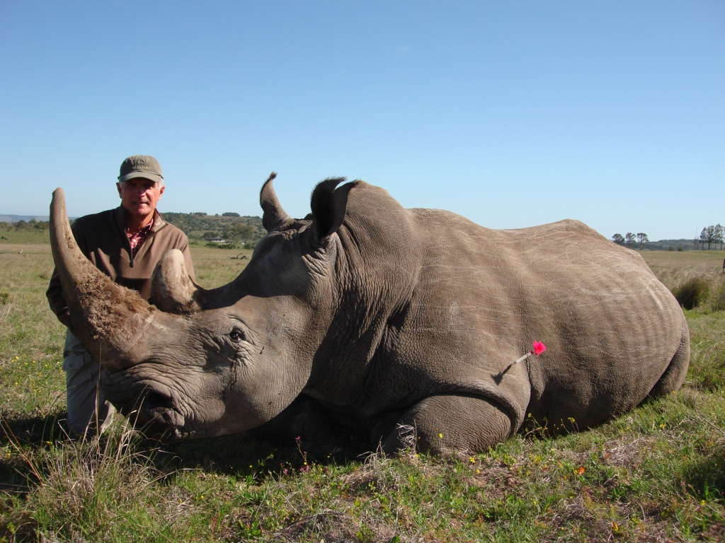 A prod Max with his darted White Rhino.