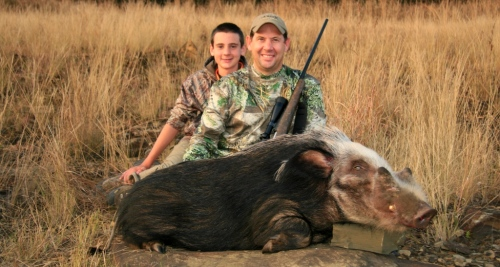 On the Bushpig front we had another memorable year. It seems our Bushpig hunting has become legendary, with many hunters requesting the opportunity of pursuing these sly beasts. As hard as we hunted, with 90% of our success coming over bait at night, it would be none other than our good friend, Steve Robinson, who would go against all odds, hunting the monster of the season at four in the afternoon!