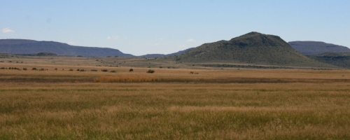 The game has once again benefited from the magic little Karoo bush - the secret to the Karoo's never ending food source. With the added bonus of an above average grass growth, one would expect the game to make it thought the winter with ease.