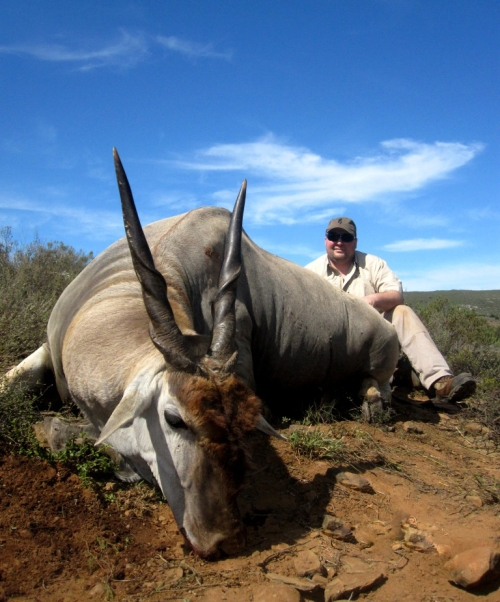 Where better to start than with one of our old timers, Chad Badger. Chad teamed up with Professional Hunter, Greg Hayes for a second time and once again produced the goods. One of five Cape Eland hunted on this particular safari, most certainly one of our favourites.