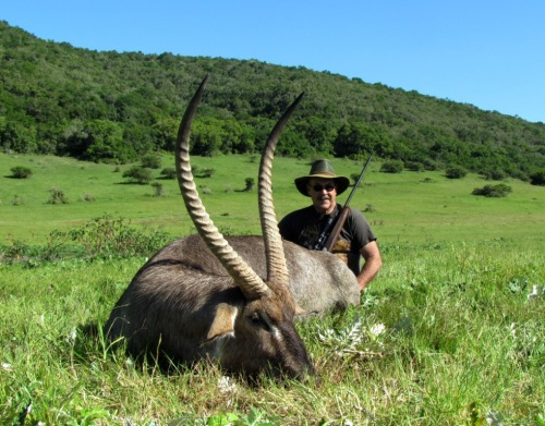His Waterbuck taken a couple of days prior to Brett's was a monster of a bull too, scoring just over 31''.