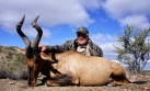 """The second memorable shot was a Red Hartebeest at 275 yards in a 20 mph wind off the sticks. My thought was frankly """"are you crazy to think I can do this?"""" But I did!"""