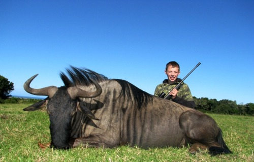 For Cole - a champion of a young hunter, there were many memorable hunts, but his Blue Wildebeest was the highlight of a plan to outwit a smart old bull. Well done young man!