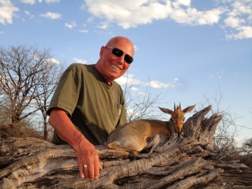 "Within three days Ron had his Dik-Dik - A magnificent ram of over 3"", easily qualifying as a gold medal, and a fantastic addition to his Tiny 10 collection."