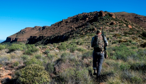 From there we set off on foot in search of Klipspringer - one of the most exciting species to pursue up in the high country.